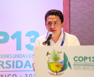 Martin Cadena Salgado